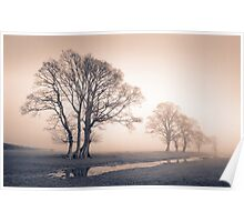 Tywi valley Trees 1 Poster