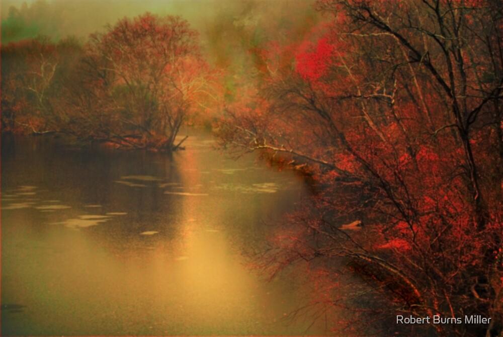 surrounding atmosphere by Robert Burns Miller