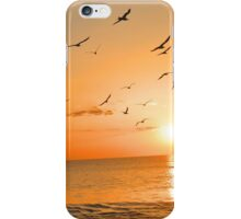 Seagulls in the Sunset iPhone Case/Skin
