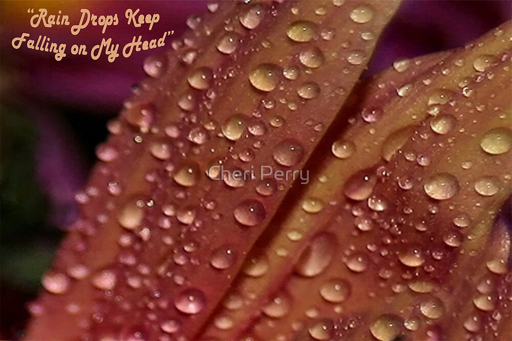Rain Drops Keep Falling on My Head by Cheri Perry