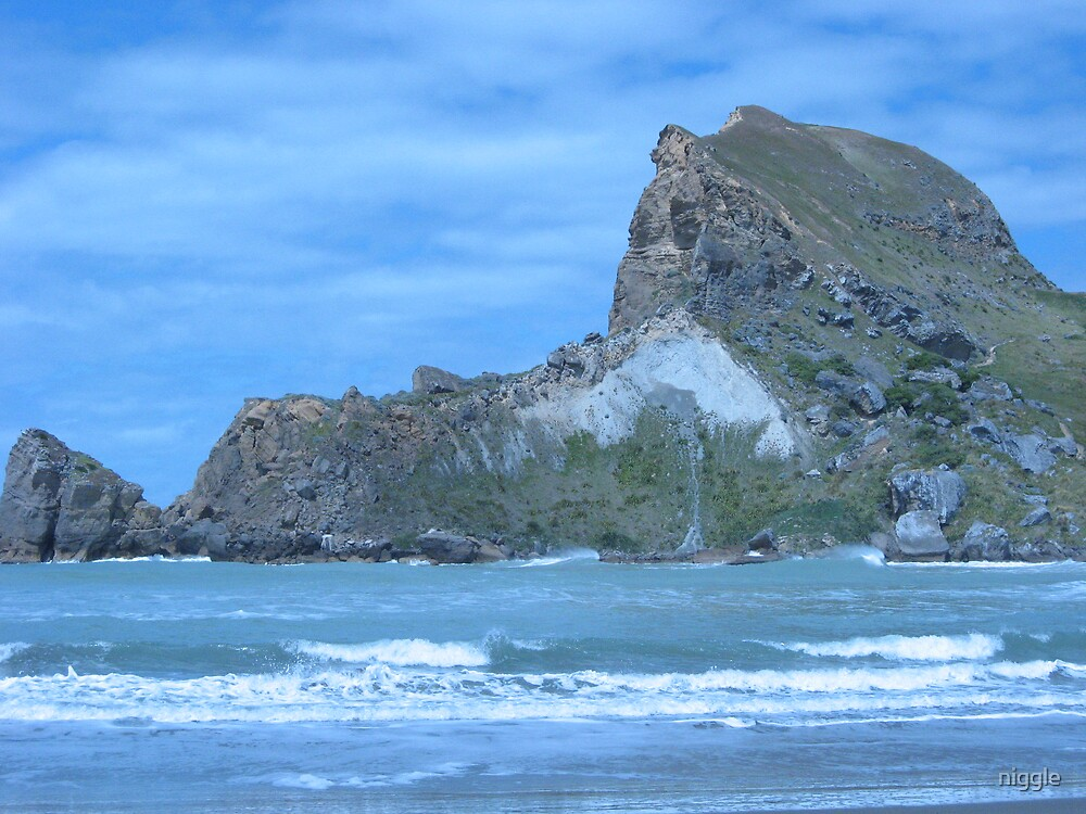 Castlepoint Wairarapa NZ by niggle