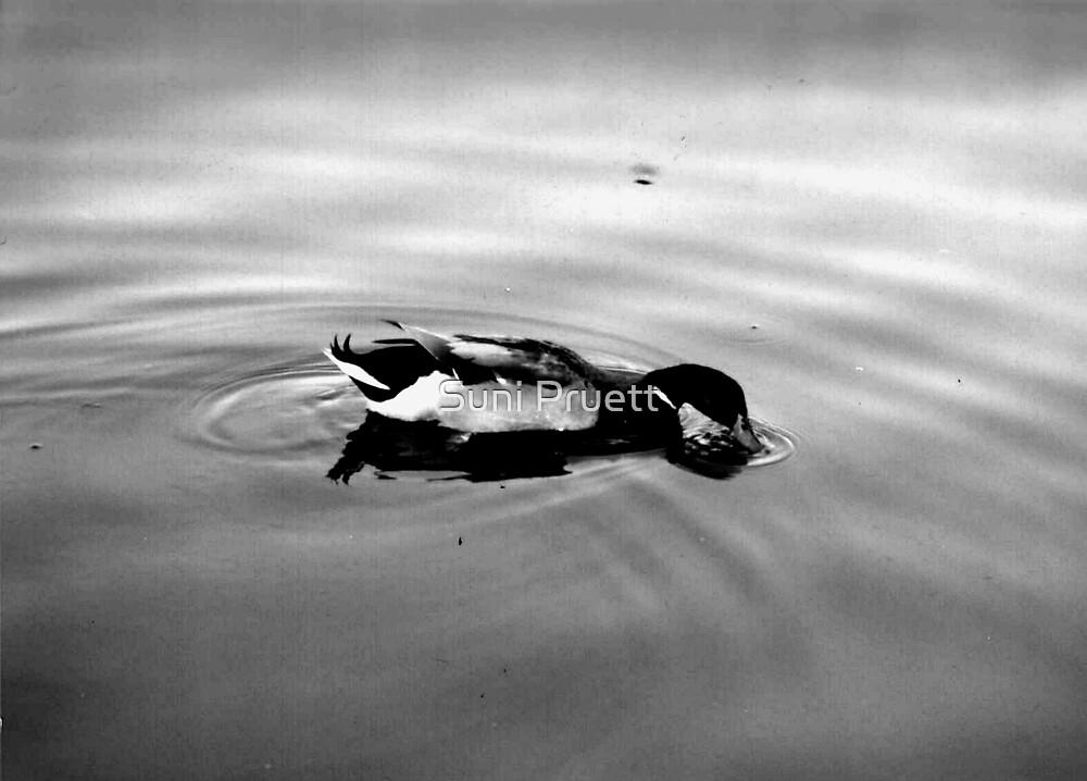 Serenity by Suni Pruett