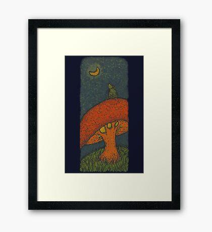 Ponder Bear Framed Print