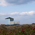 Blue beach hut by Jennifer Bradford