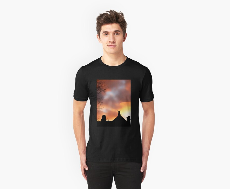 Silhouette Sorg House (T-Shirt) by Tammy Soulliere