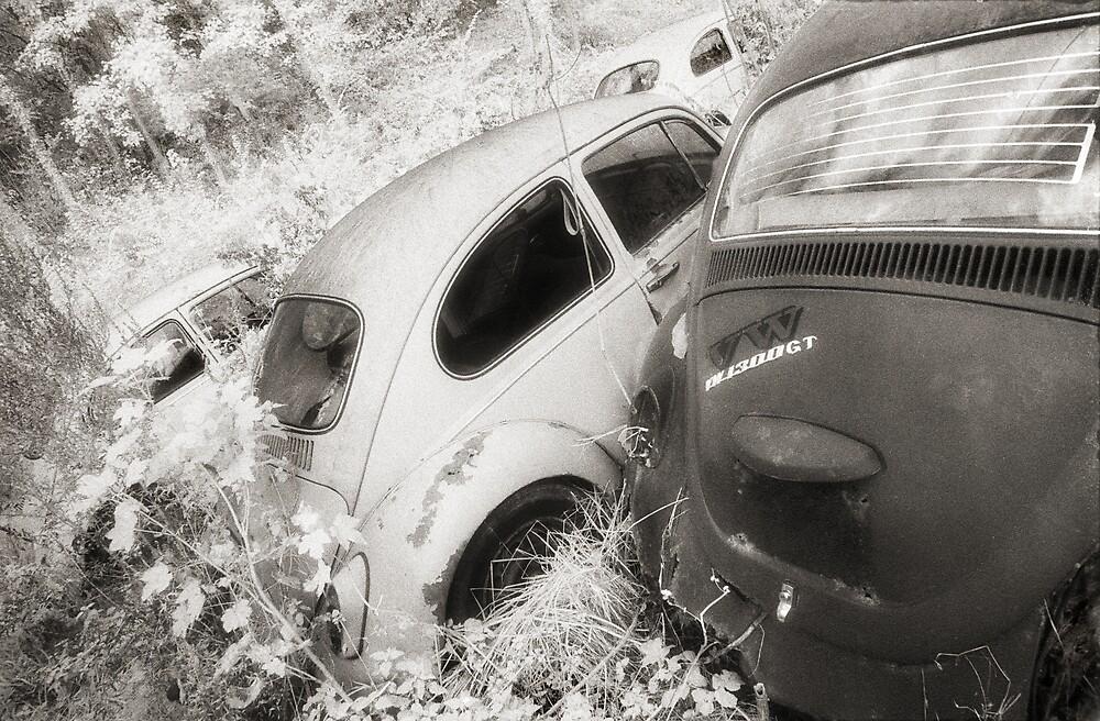 Talybont Wrecks 1 by Hywel Harris