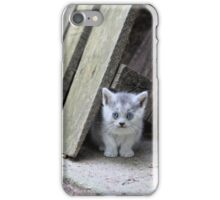 Blue Eyed Kitten Looking Relaxed iPhone Case/Skin