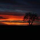 Prairie Sunset by CRobinson