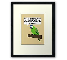 The HDR Parrot Framed Print