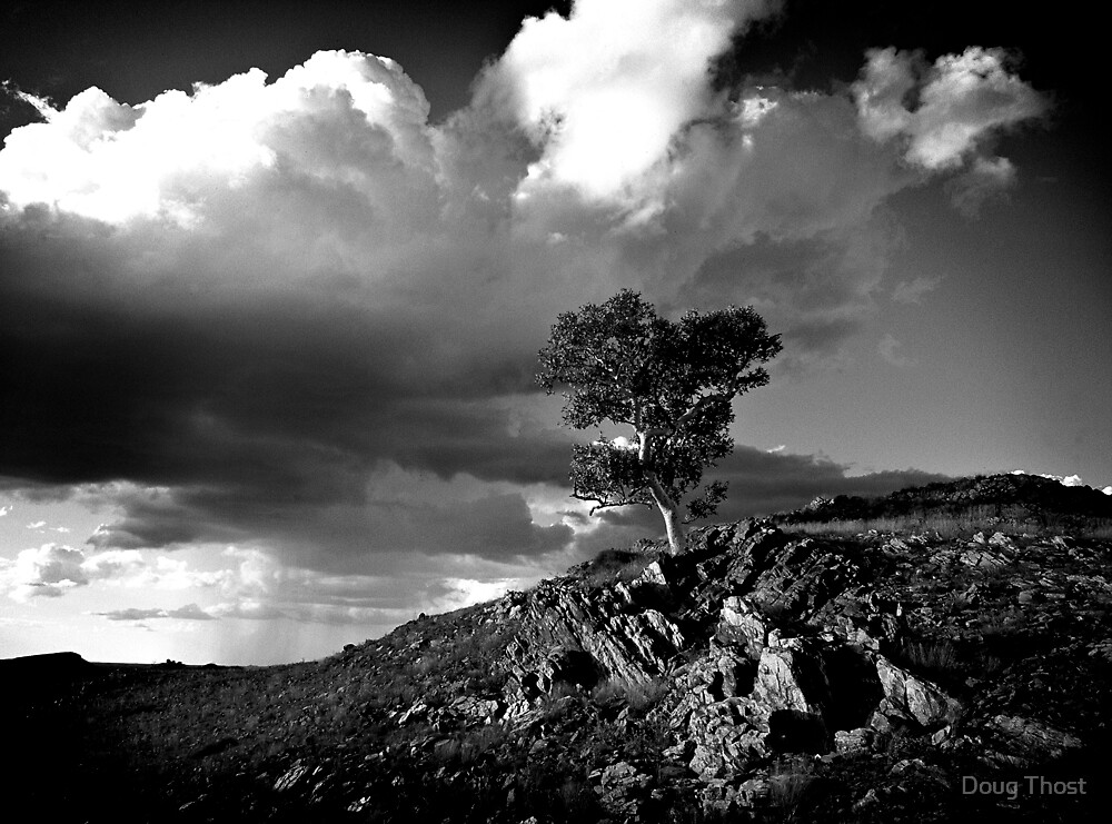 Pilbara Scene by Doug Thost