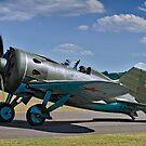 """Polikarpov I-16 """"Rata"""" D-EPRN red 9 by Colin Smedley"""