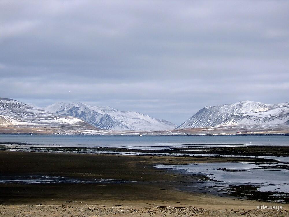 Iceland by sideways
