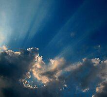 Winter Rays by Chelsea Kerwath