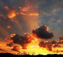 Whitianga Sunset by Kay Evison