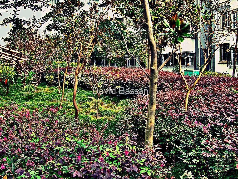 garden by franchetti