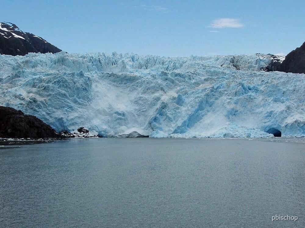 Tidewater Glacier by pbischop