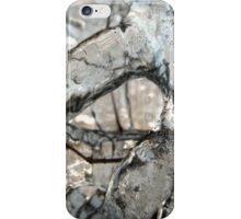 Icicles II iPhone Case/Skin