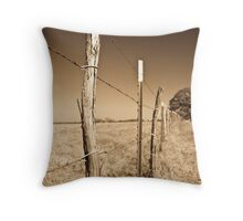 Borders Throw Pillow