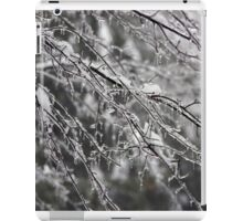 Icey Branches iPad Case/Skin