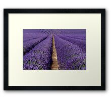 It is All About  Provence Framed Print