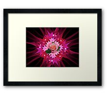 One Pink Rose to Go Framed Print