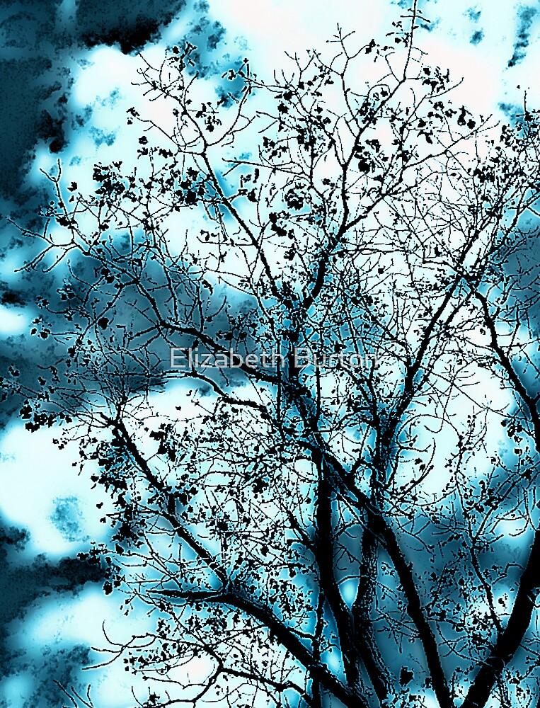 Blue Sky by Elizabeth Burton