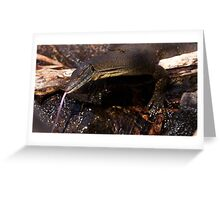 Mertens Water Monitor ~ I hate photographers! Greeting Card