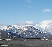 Alaska Range Mountains Close Up  by pbischop