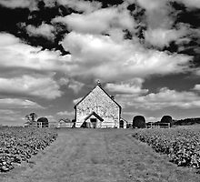 Church, Hampshire, UK by Chameleon Photography