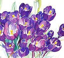 The First Crocuses of Spring by Amanda Lee