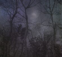 Winter Stirs From Slumber by Charles Oliver