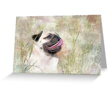 Pug Happiness Greeting Card