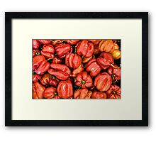 Red Habanero Peppers Framed Print