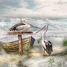 Pelican Point by Trudi's Images