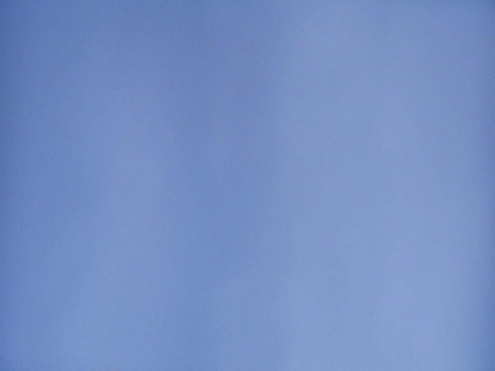 blue sky//photo by joelkim