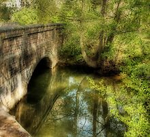 Shustoke bridge by John Edwards