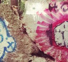 Broken Wall in Woods Sticker