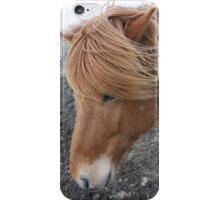 Brown Icelandic Horse iPhone Case/Skin
