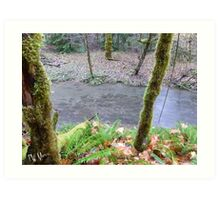 Salmon, Cowlitz River side channel Art Print