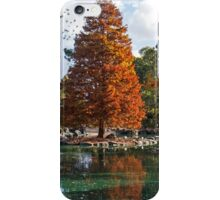 Autumn in Auburn. iPhone Case/Skin