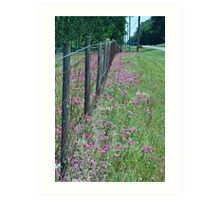 Barbed Wire and Wildflowers Art Print