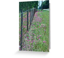 Barbed Wire and Wildflowers Greeting Card