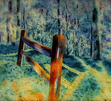 Fence To Nowhere by Barry  Jones