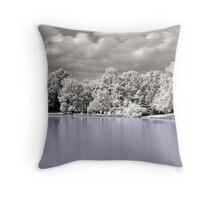 House On The Lake  Throw Pillow