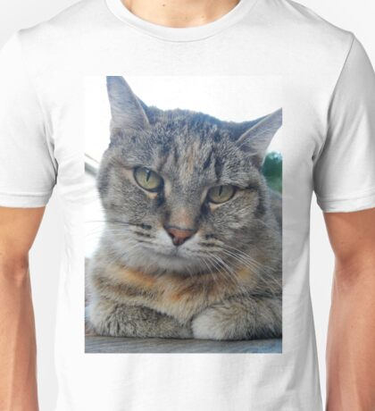 Disapproval   Unisex T-Shirt