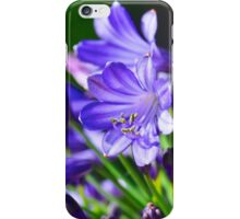 Midnight Agapanthus iPhone Case/Skin
