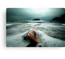 Silk Canvas Print