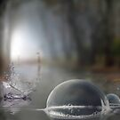 Raindrop Splash by Igor Zenin