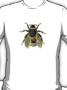 antique typographic vintage honey bee T-Shirt