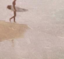 Surfers No.49 Sticker